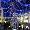 サッポロファクトリーのクリスマスツリー