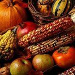 [マタイ9:18-38]収穫は多いが働き手は少ない