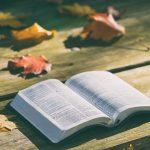 聖書勉強会のテキストのバックナンバーを掲載することに!