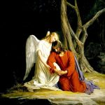 [マタイ福音書26:31-46]ゲツセマネの祈り