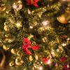 クリスマスの主役を迎えよう!