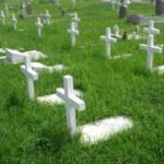 サラの死と墓地の購入[創世記23章]